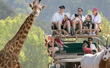 صورة جولة مجموعة جنوب أفريقيا