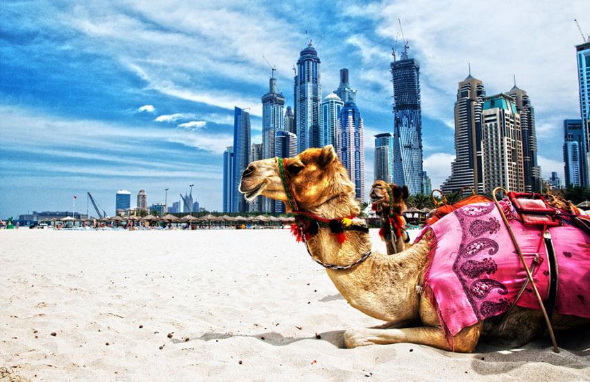 جاذبه های توریستی دبی