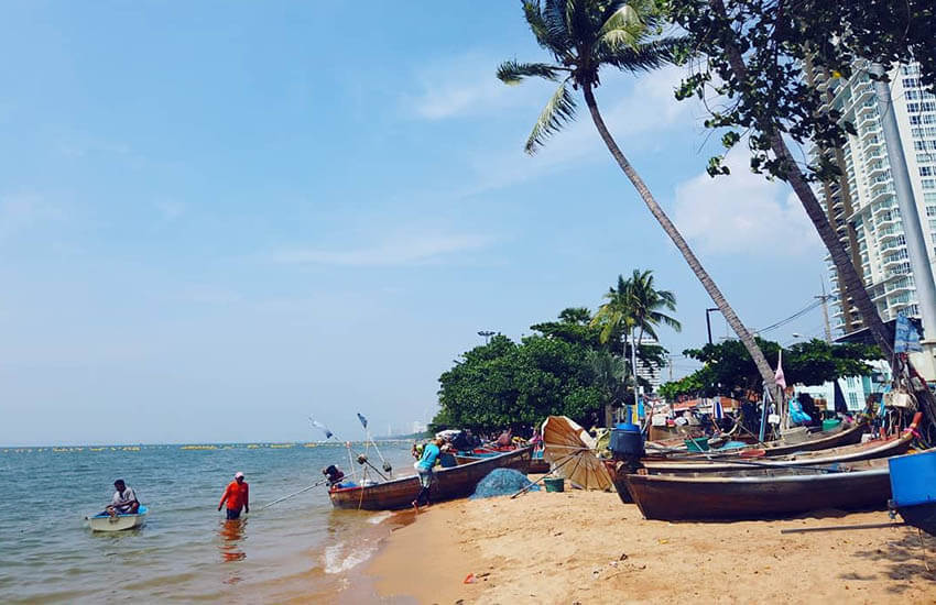ساحل جامتین