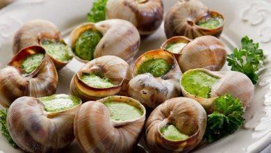 تصویر از 10 تا از بهترین غذاهای فرانسوی که طعم لذیذی دارند