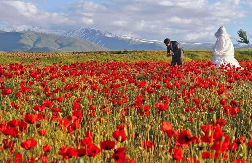 بهترین جاهای دیدنی ایران برای ماه عسل